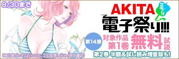 AKITA電子祭り夏の陣(2017)第14弾
