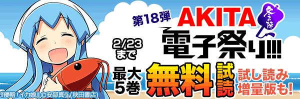 AKITA電子祭り 冬の陣 第18弾
