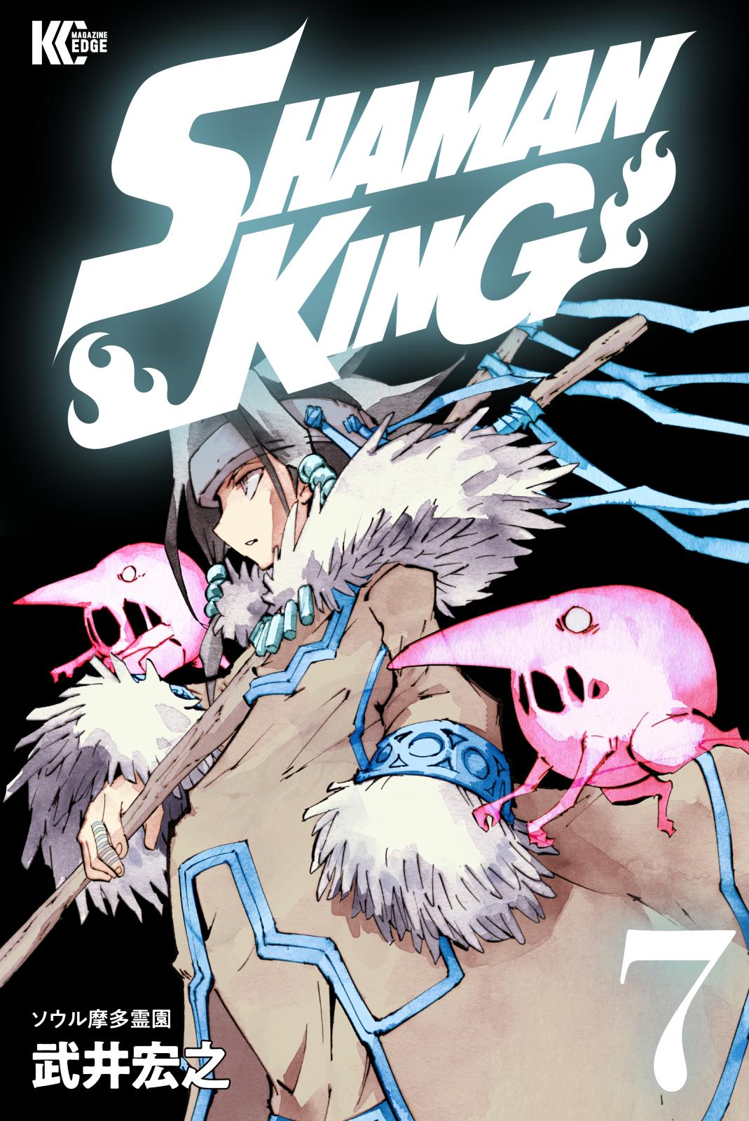 SHAMAN KING ~シャーマンキング~ KC完結版(7)