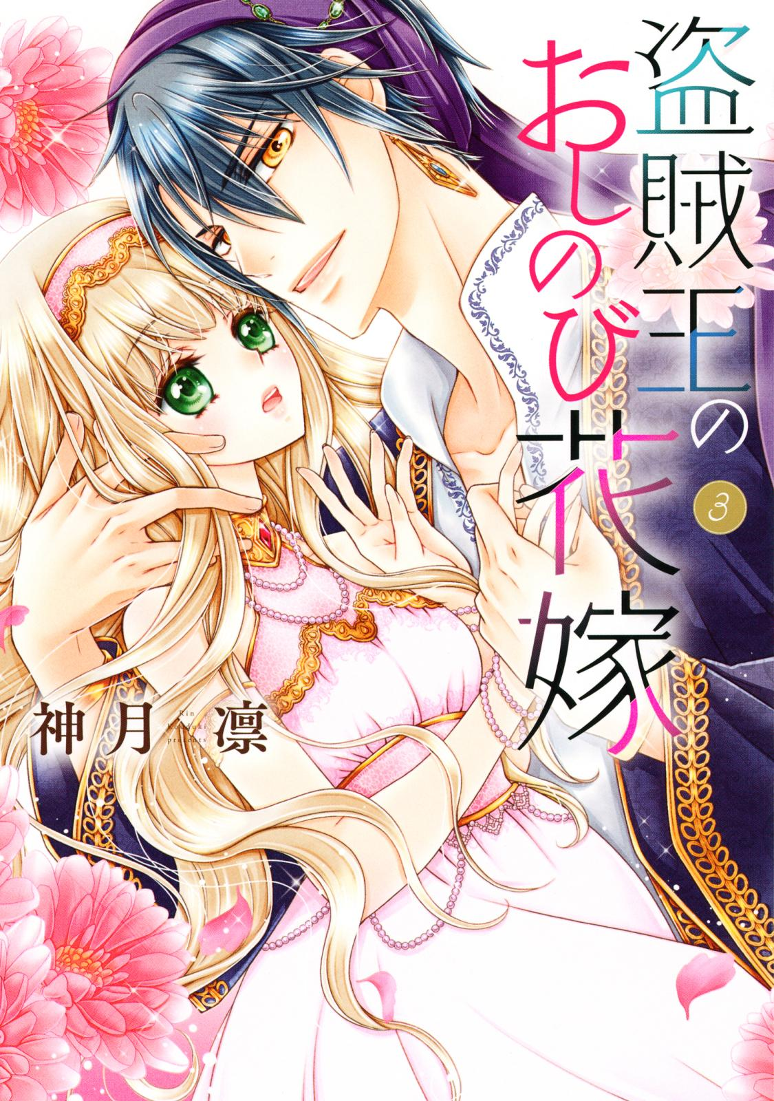 盗賊王のおしのび花嫁 3