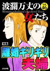 波瀾万丈の女たち離婚ギリギリ夫婦 Vol.46